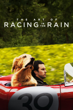 Poster The Art of Racing in the Rain